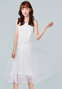韓氛百搭紗裙洋裝